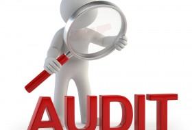 Auditor Intern în Sectorul Public – Cod COR 241306